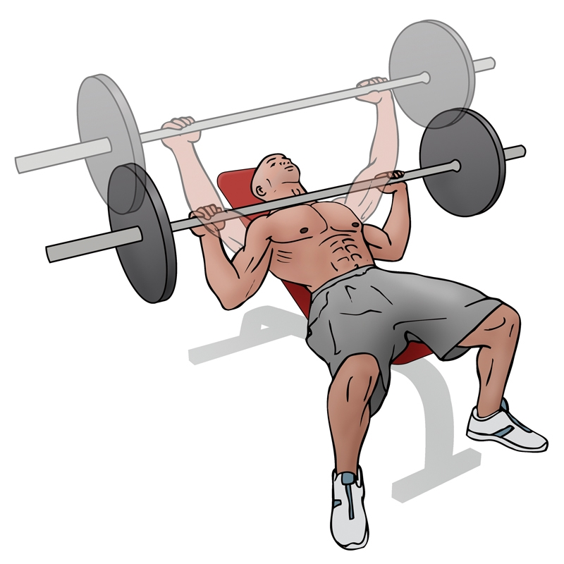 How To Perform Barbell Incline Bench Press Focused On Fit